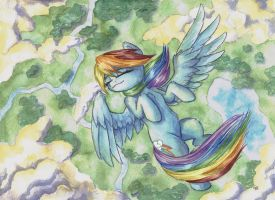 Bird's Eye View by The-Wizard-of-Art