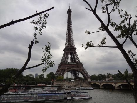 The Effiel Tower 4 by WCRFE