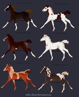Chestnut Based Pinto Adopts Closed by sable-silence