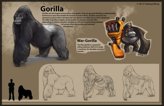 Gorilla and War-Gorilla by wyd1985