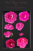 pink roses PNG by starscoldnight by StarsColdNight