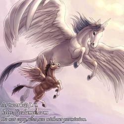 Fly with me by J-C