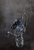 Dark Souls Artorias bust new photo by futantshadow
