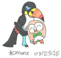 Toucannon and Rowlet