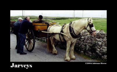 Jarveys by Loxly