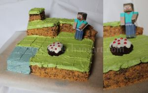 Minecraft Cake by bicyclegasoline