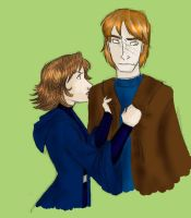 Remus and Tonks by Shuggie