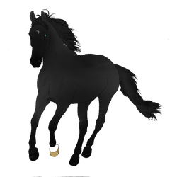 Black Horse Adopt PNG Sold by NorthernMyth