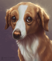 Sadie Portrait by SilverSkittle