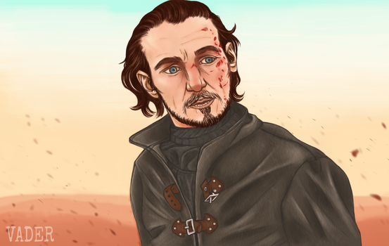 Ser Bronn (of the fookin' Blackwater) by teo4ever
