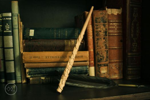 Hermione Granger' wand replica by enguerrand