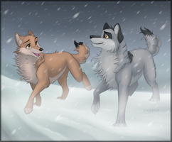 Through the Storm by Fecu