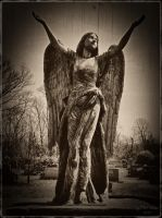 Grounded Angel by morbidmind6