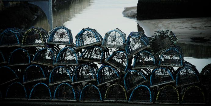 Fishing Cages by kellock