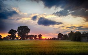 Dzwierszno Male Sunset (HDR) by skywalkerdesign