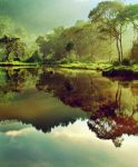 Morning at Situ Gunung II by juhe