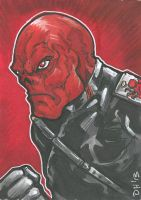 Red Skull Card by DKHindelang
