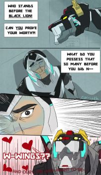 Voltron: Black Wings by carrinth