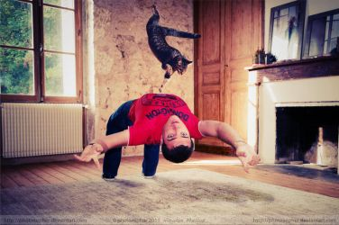 Bullet-time cat by photosopher