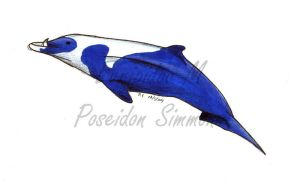 strap toothed whale by poseidonsimons