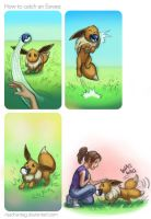 How to catch an Eevee by Risachantag