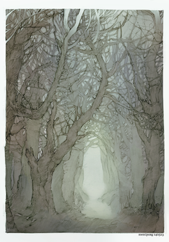 forest2 by Memipong