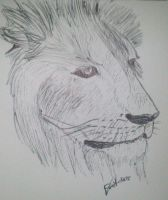 68lion by LoiseFenollCreation