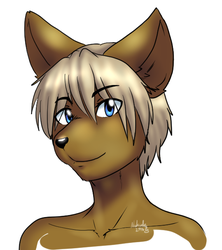 New Tablet Testing by Nukude