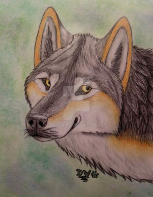 Just Me! by DanyWolf