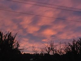 Tasmanian Winter Evening Sky - Northern Midlands by MK-FouR