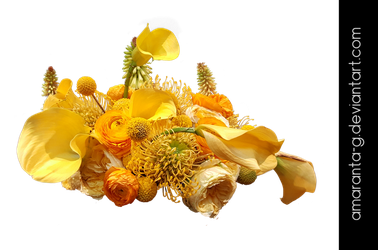 Bouquet of yellow flowers by Amaranta-G