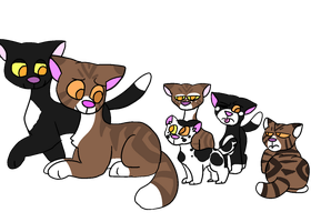 Ravenpaw and Leafpool crackkits [CLOSED] by okapisweater