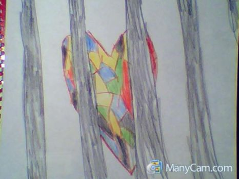 Close up Cage heart by soulkinda