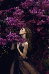 Lilac* by rossalev-andrey