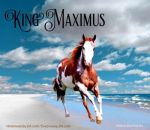 King Maximus- Horse Avatar  by MuchMischief