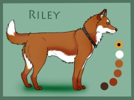 WCK's Autumn Sonata: Riley by Sedillo-Kennels