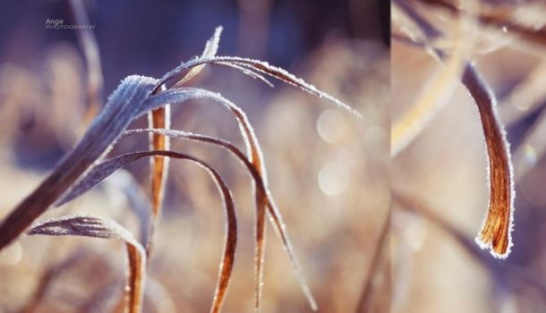 Cold and Sunny by Angie-AgnieszkaB