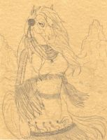 Native Horse Sketch-Commission by stephanielynn