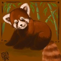 Red Pandas Are Better Than You by avalonauggie