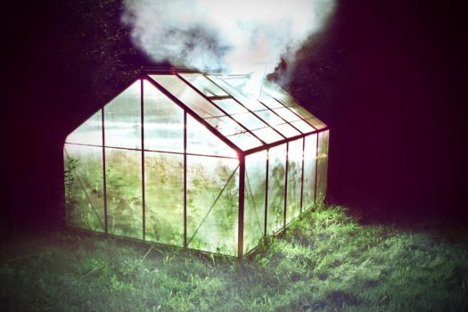 greenhouse by aiemydyjat