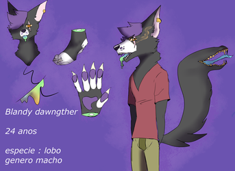 wolf adoptable CLOSED by blandy-wolf098YT