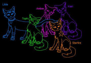 5 Star Cats by Hawkpelt22