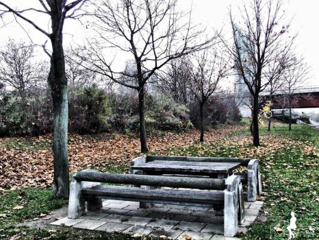 empty bench 1 by R-L-P