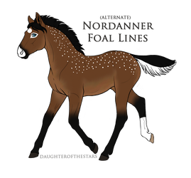 2738 Foal Recreation by AhernStables
