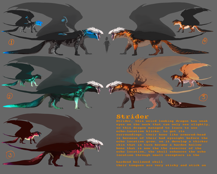 Adoptables Strider Dragons by Black-Wing24