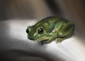 Frog - Colors by CarloValente