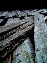 wood slide by Lucychromosome