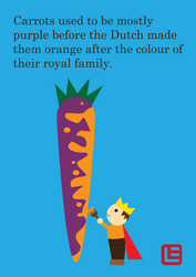 Carrots used to be purple by elsalee