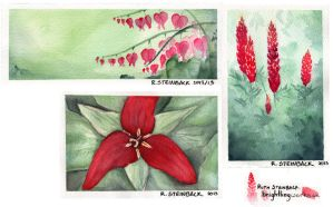 Watercolour sketches - Reds by brightling
