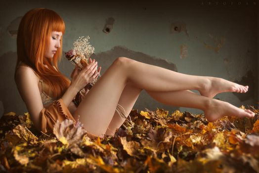 Autumn Heaven by ArtofdanPhotography